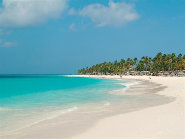 Divi Aruba All Inclusive - dream vacation