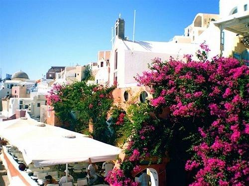 Fotinos Houses Oia Greece - dream vacation