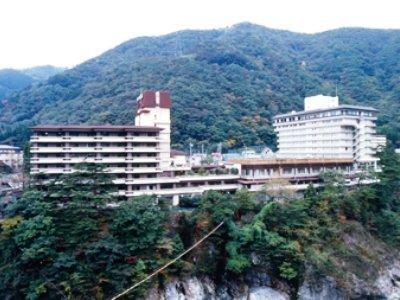 Kinugawa Green Palace - dream vacation