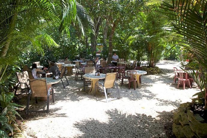 El Sano Banano Village Hotel - dream vacation