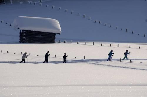 Alpen Chalet Jagdhof Flachau - dream vacation