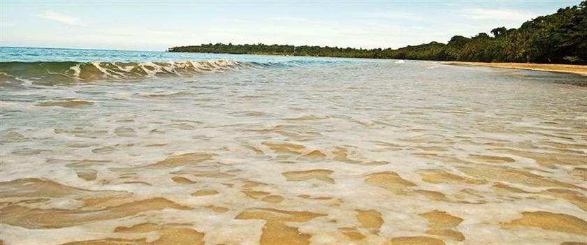 Almonds & Corals - dream vacation