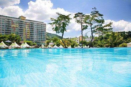 Wellihillipark Resort - dream vacation