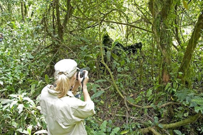 Sanctuary Gorilla Forest Camp-3