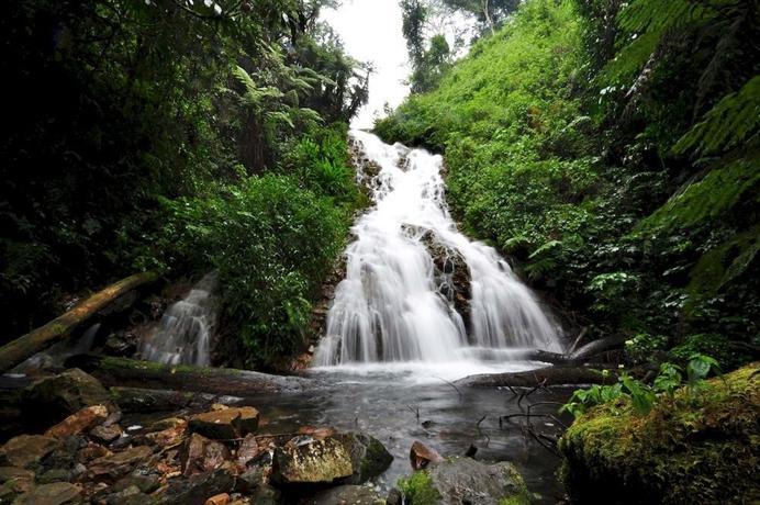 Sanctuary Gorilla Forest Camp-1