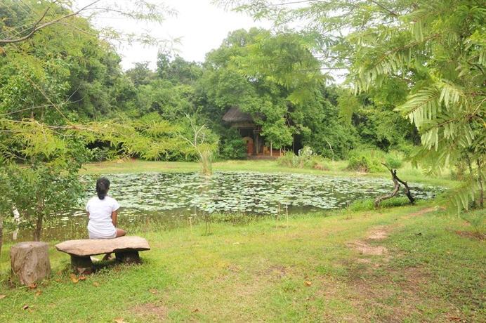Back of Beyond - Dehigaha Ela - dream vacation