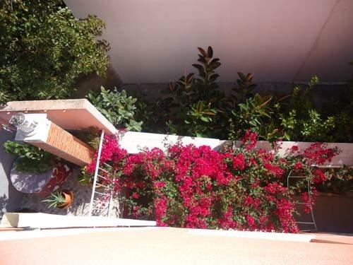 Hotel Aviz - dream vacation