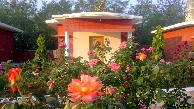 Shri Krishna Jungle Resort - dream vacation