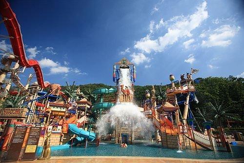 Daemyung Resort Vivaldi Park - dream vacation