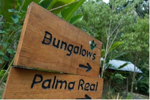 Danta Corcovado Lodge - dream vacation
