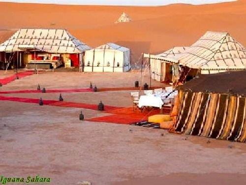 Bivouac Iguana Sahara - dream vacation