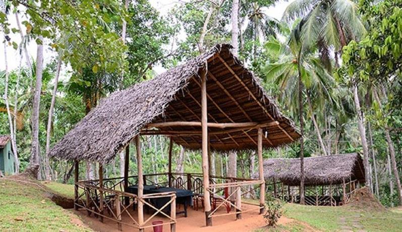 Hotel Tulip Of Ceylon - dream vacation