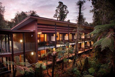 Te Waonui Forest Retreat - dream vacation