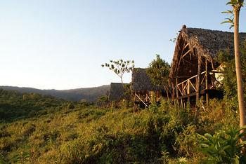 Crater Forest Tented Camp Ngorongoro - dream vacation
