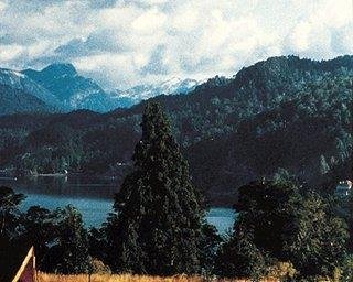 Las Lomas del Correntoso Neuquen - dream vacation