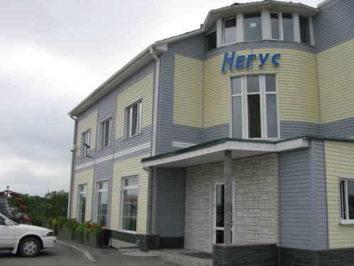 Мотель Негус