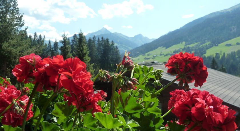 Pension Gratlspitz - dream vacation