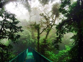 Coati Place Hostel - dream vacation