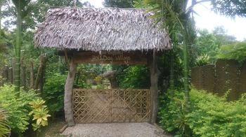 Pui Lodge - dream vacation