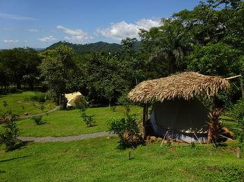 Hostel Alouatta - dream vacation