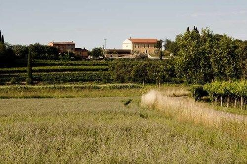 Agriturismo Panorama - dream vacation