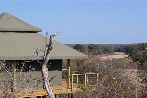 Simbavati Hilltop Lodge - dream vacation