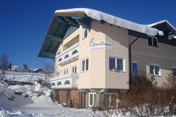 Appartement Alpenblume - dream vacation