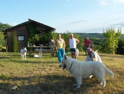 Ferienhaus Waldhof - dream vacation