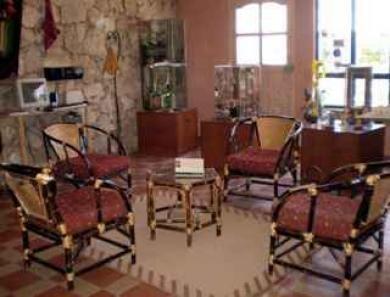 Los Girasoles Hotel - dream vacation