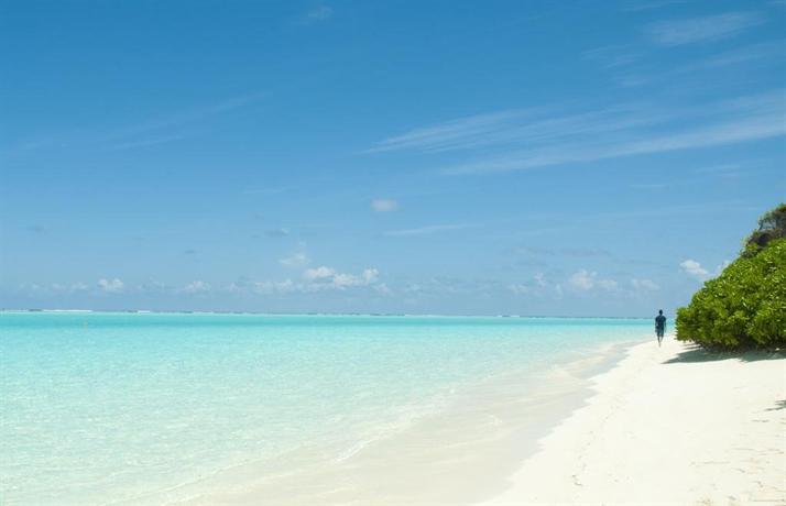 Palm Garden Thoddoo - dream vacation