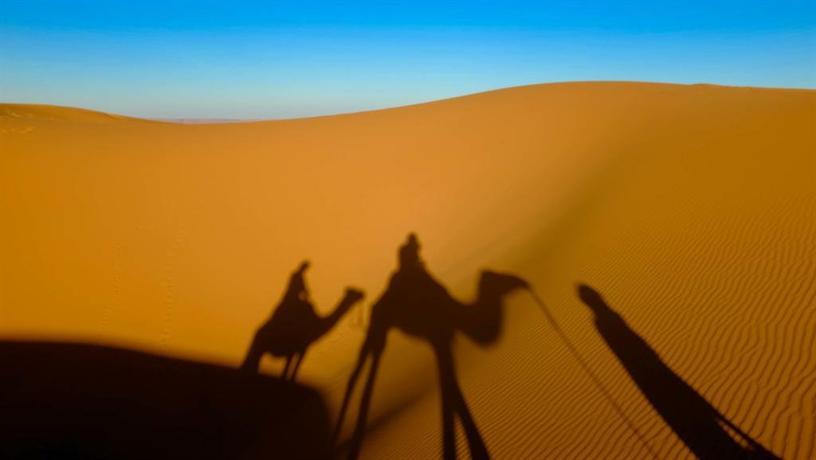 Ali & Sara\'s Desert Palace - dream vacation