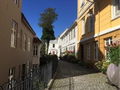 Skansen House Tordenskjolds Gate 14 - dream vacation