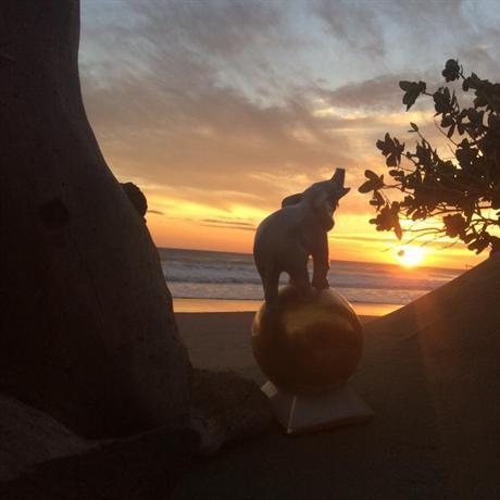 Melting Elefante - dream vacation