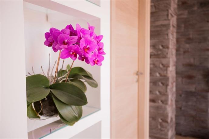 Summer Orchid - dream vacation