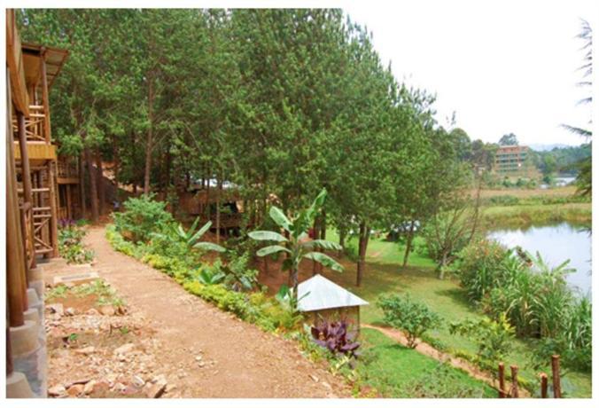 Bugombe Gateway Camp - dream vacation
