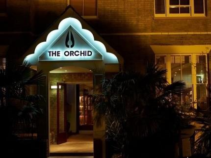 The Orchid Hotel - dream vacation