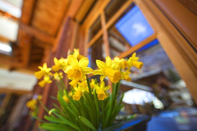 Sunstar Style Hotel Zermatt - dream vacation