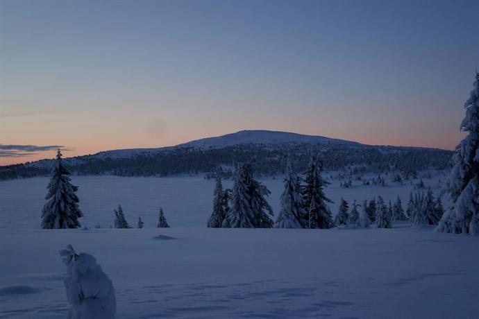 Nordseter Fjellstue & Hytter - dream vacation