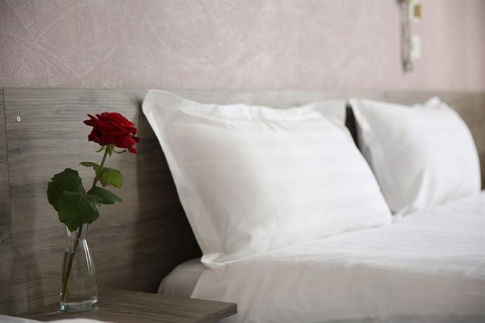 Hotel Du Cygne Tours - dream vacation