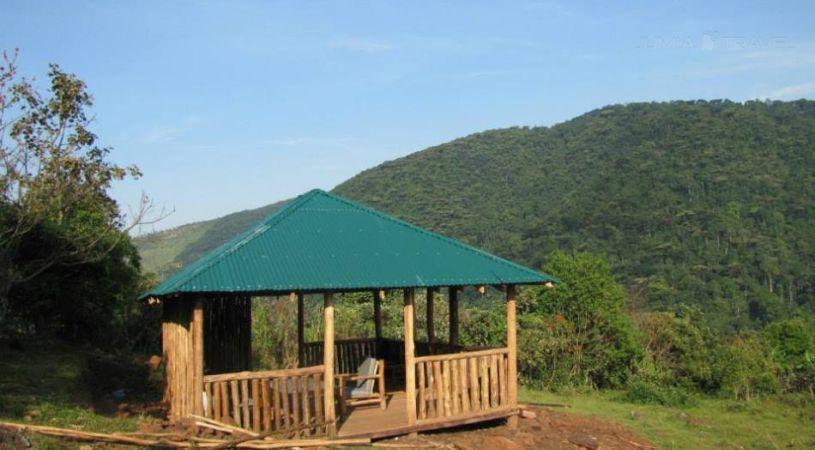 CTPH Gorilla Conservation Camp - dream vacation