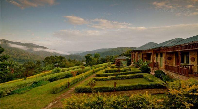 Silverback Lodge - dream vacation