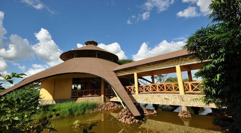 Kilima Safari Camp - dream vacation