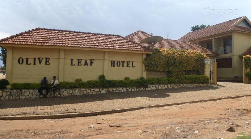 Olive Leaf Hotel Ltd - dream vacation