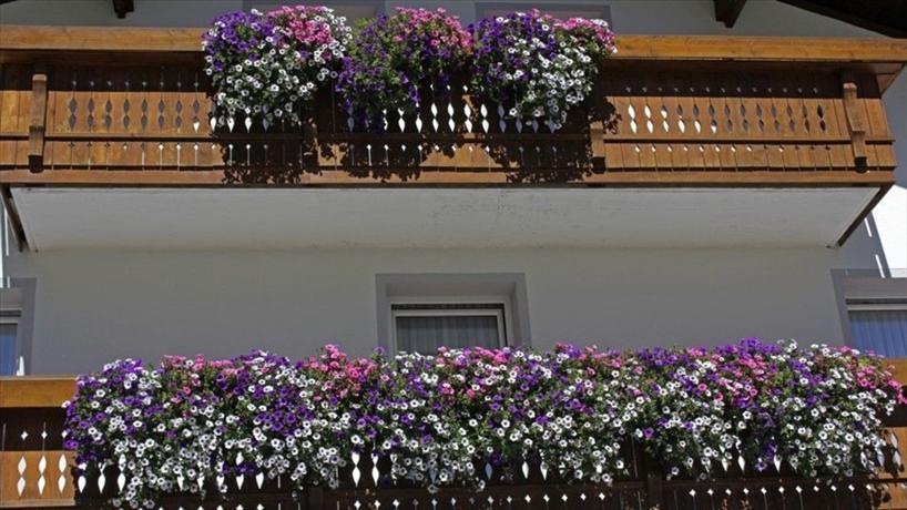 Haus Alpenrose Sankt Leonhard im Pitztal - dream vacation
