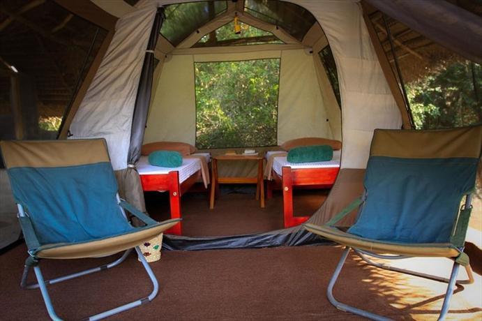Palpatha Eco Safari Lodge - dream vacation