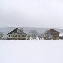 Bauernhof Wesl Ferienwohnungen - dream vacation