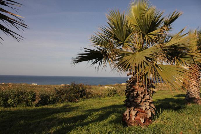Homestay in Pembroke near Balluta Bay - dream vacation