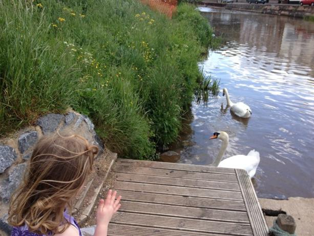 Homestay in Exeter near St James Park Railway Station - dream vacation
