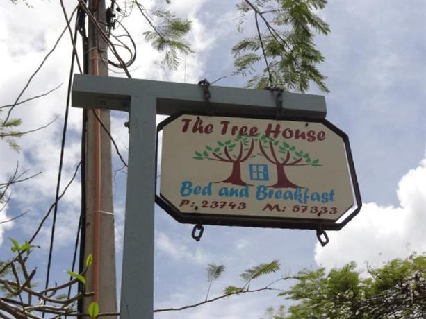 Homestay in Arorangi near Rarotonga International Airport - dream vacation