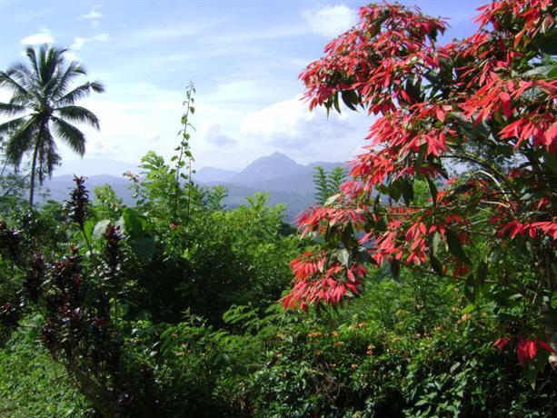 Homestay in Wattappola near Ambekka Temple - dream vacation